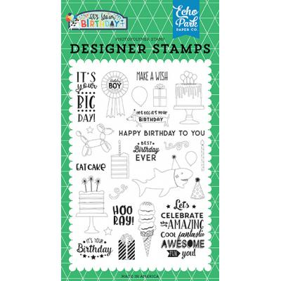 Echo Park It's Your Birthday Boy Clear Stamps - Birthday Boy