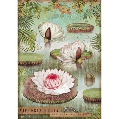 Stamperia Amazonia Rice Paper - Waterlily