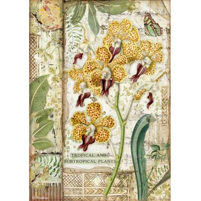 Stamperia Amazonia Rice Paper - Orchid